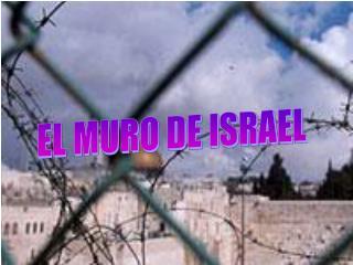 EL MURO DE ISRAEL