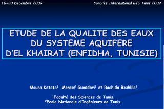 ETUDE DE LA QUALITE DES EAUX DU SYSTEME AQUIFERE  D'EL KHAIRAT (ENFIDHA, TUNISIE)