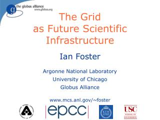 The Grid  as Future Scientific Infrastructure