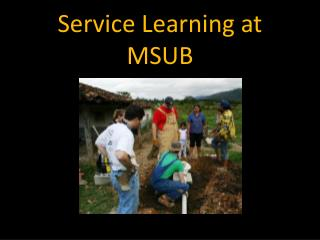Service Learning at MSUB