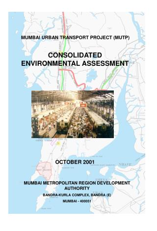 CONSOLIDATED ENVIRONMENTAL ASSESSMENT