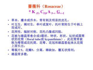 蔷薇科( Rosaceae ) *  K  (5)  C 5,0  A  5-∞ G ∞-1