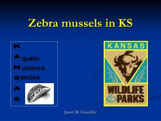 Zebra mussels in KS