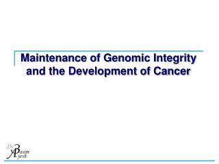 Maintenance of Genomic Integrity and the Development of Cancer