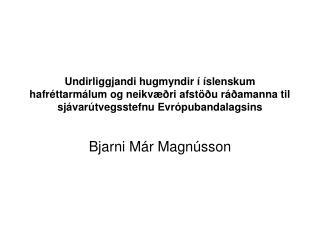 Bjarni Már Magnússon