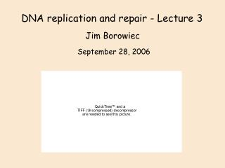 DNA replication and repair - Lecture 3