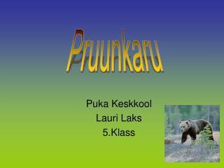 Puka Keskkool Lauri Laks 5.Klass