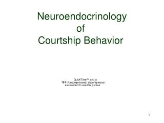 Neuroendocrinology  of  Courtship Behavior