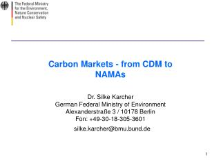 Carbon Markets - from CDM to NAMAs