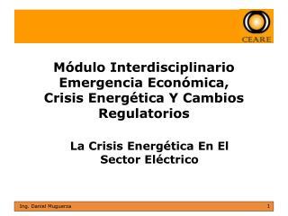 Módulo Interdisciplinario Emergencia Económica, Crisis Energética Y Cambios Regulatorios