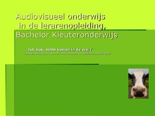Audiovisueel onderwijs  in de lerarenopleiding, Bachelor Kleuteronderwijs