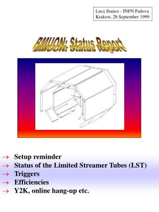 BMUON: Status Report