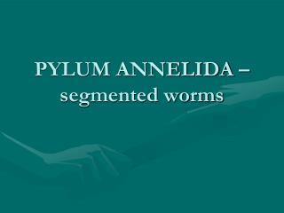 PYLUM ANNELIDA � segmented worms