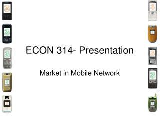 ECON 314- Presentation