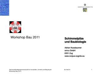 Schimmelpilze und Baubiologie Adrian Nussbaumer emvu GmbH 6301 Zug corpus-cognito.eu