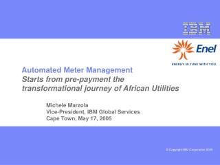 Michele Marzola Vice-President, IBM Global Services Cape Town, May 17, 2005