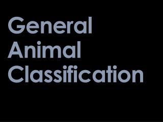 General Animal Classification