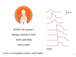 Bi/CNS 150 Lecture 4 Monday, October 6, 2013 Action potentials Henry Lester