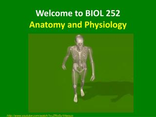 Welcome to BIOL 252 Anatomy and Physiology