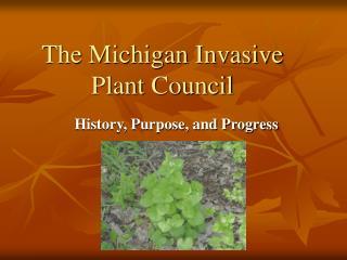 The Michigan Invasive Plant Council