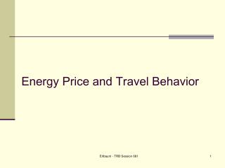 Energy Price and Travel Behavior