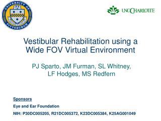 Vestibular Rehabilitation using a Wide FOV Virtual Environment