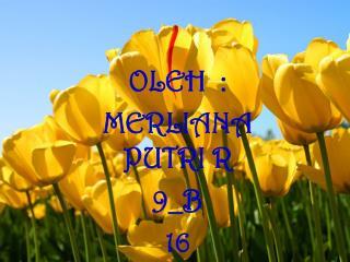 OLEH  :  MERLIANA PUTRI R 9_B 16