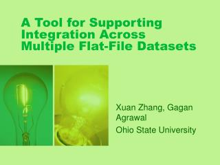 A Tool for Supporting Integration Across Multiple Flat-File Datasets