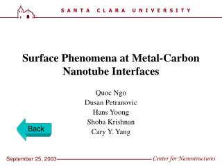 Surface Phenomena at Metal-Carbon Nanotube Interfaces