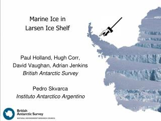 Marine Ice in  Larsen Ice Shelf