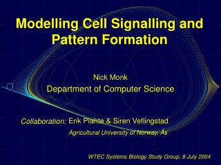 Modelling Cell Signalling and Pattern Formation