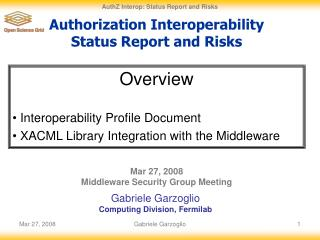 Authorization Interoperability Status Report and Risks
