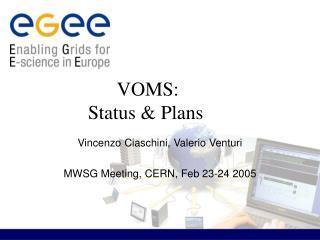 VOMS: Status & Plans