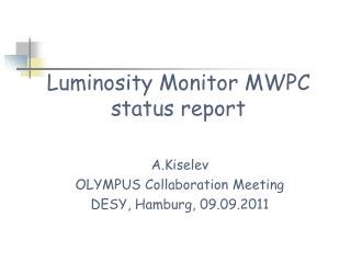 Luminosity Monitor MWPC  status report