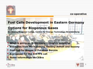 Fuel Cells Development in Eastern Germany  Options for Biogenous Gases