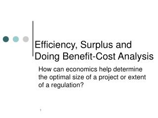 Efficiency, Surplus and Doing Benefit-Cost Analysis