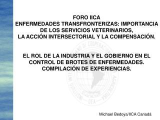FORO IICA ENFERMEDADES TRANSFRONTERIZAS: IMPORTANCIA DE LOS SERVICIOS VETERINARIOS,