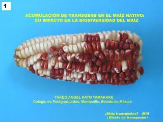 TAKEO ANGEL KATO YAMAKAKE Colegio de Postgraduados, Montecillo, Estado de México