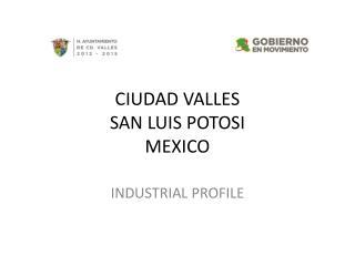 CIUDAD VALLES SAN LUIS POTOSI MEXICO