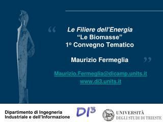 """Le Filiere dell'Energia  """"Le Biomasse""""  1 o  Convegno Tematico  Maurizio Fermeglia"""