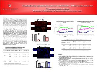 Visualization and quantification of the reversal of MDR by PSC833  in vitro  and  in vivo