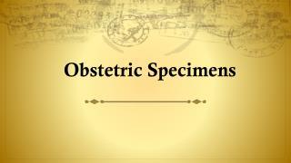 Obstetric Specimens