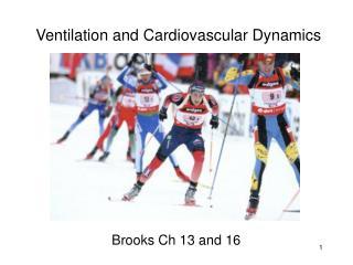 Physio Ex Lab Exercise 5 Cardiovascular Dynamics 1-4