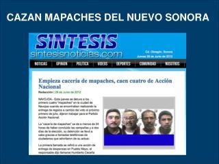 CAZAN MAPACHES DEL NUEVO SONORA