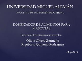 UNIVERSIDAD MIGUEL ALEM ÁN