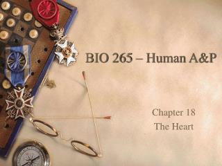 BIO 265 – Human A&P