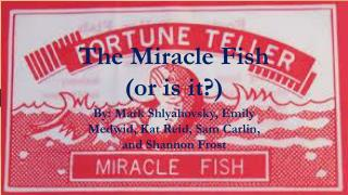 The Miracle Fish (or is it?)