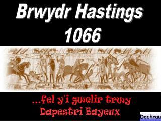 ...fel y'i gwelir trwy Dapestri Bayeux