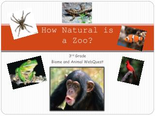How Natural is  a Zoo?