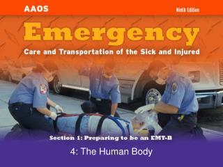 4: The Human Body
